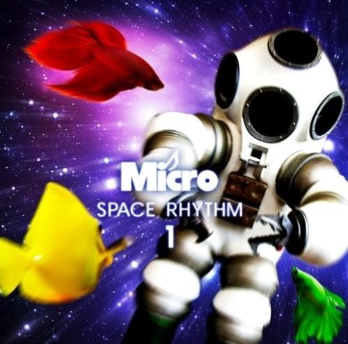 20090408micro2-500x494